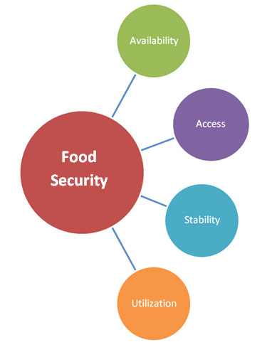 Food Security | The Warehouse Receipts System: Improving Food Security in the Post-Harvest Value Chain